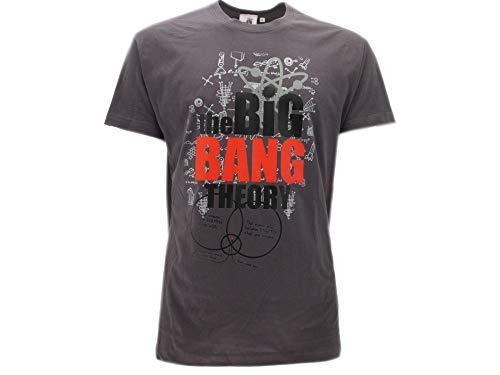 T-Shirt Originale Big Bang Theory Prodotto Ufficiale Grigia (L Adulto)