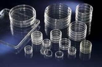 3073128 Tc Dish 60x15mm W/o Vent 400/CS sold as Case Pt# 150326 by Nalge-Nunc International
