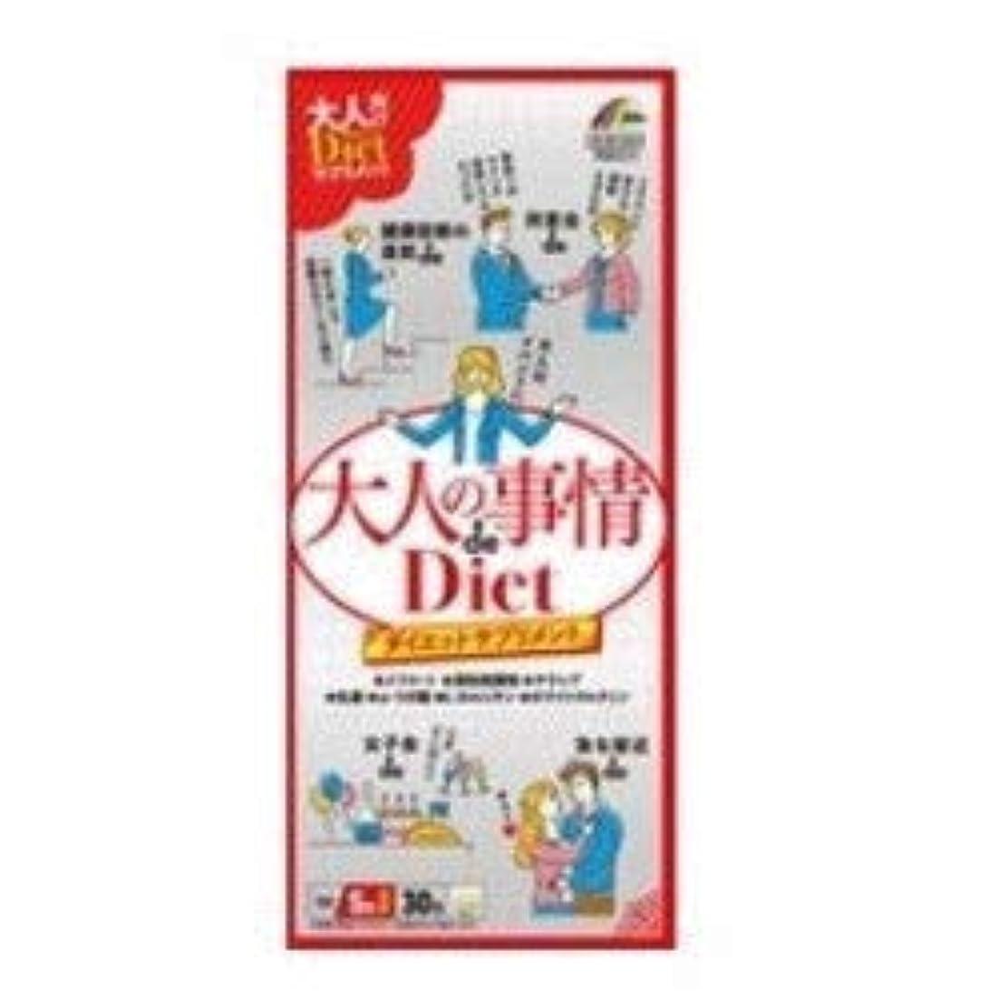 レンダリング土砂降りキモい【ユニマットリケン】大人の事情ダイエット 30包×3