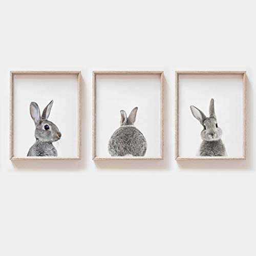 MoharWall Nursery Wall Art Set of 3 Gray Rabbit Prints Kids Room Cute Decor Baby Animals Posters product image