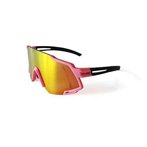 Brown Labrador Gafas Ciclismo polarizadas con 5 Lentes Intercambiables UV 400. Gafas...