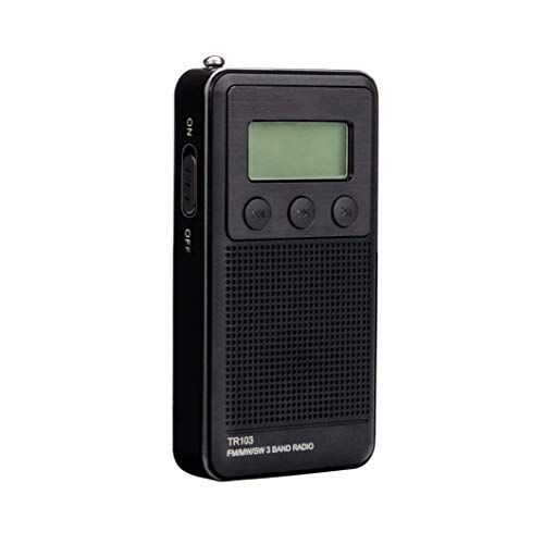 Bdesign Portable Digital Small FM Radio,Pocket Walkman MP3 Radio with Recorder, Micro-SD/TF/AUX, Rechargeable Battery Operated and Lock Keys for Jogging, Walking, Traveling