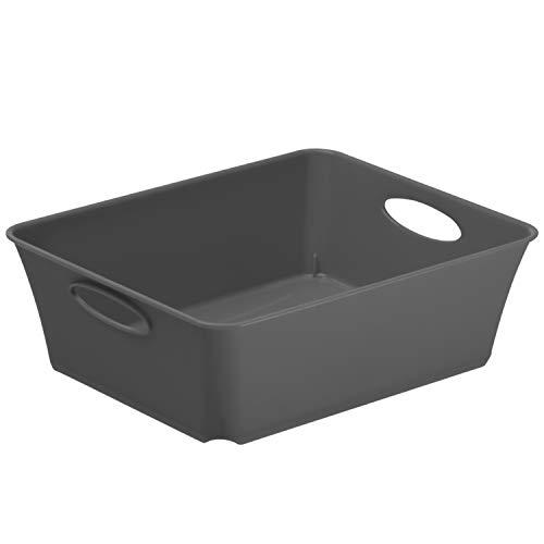 Rotho Living kleine Aufbewahrungsbox 1l, Kunststoff (PP) BPA-frei, anthrazit, C6/2,5l (18,6 x 15,1 x 6,0 cm)