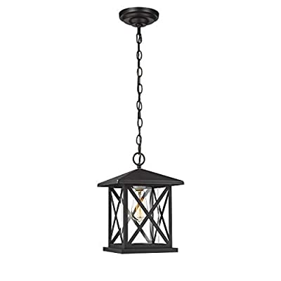 Harriet Industrial Outdoor Hanging Lantern Light Fixture, Exterior Pendant Porch Light in Matte Black Finish with Clear Glass, Chain Adjustable, HOHL01B