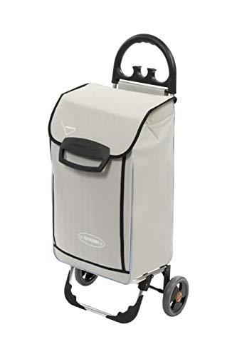 Aurora Einkaufstrolley mit 2 Rädern mit Kühltasche, leichte Struktur und bequemer Griff mit Haken für Taschen