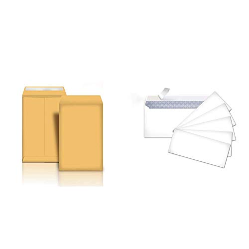 Amazon Basics Catalog Mailing Envelopes, Peel & Seal, 9x12 Inch, Brown Kraft, 100-Pack - AMZP13 & #10 Security-Tinted Envelopes with Peel & Seal, White, 500-Pack