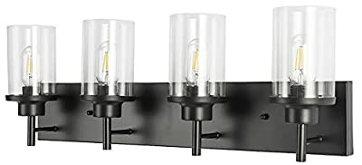PUUPA 4 Lights Bathroom Vanity Lighting, Modern Industrial Wall Light Fixture with Clear Glass Shade for Bedroom Powder Room Porch Kitchen Living Room