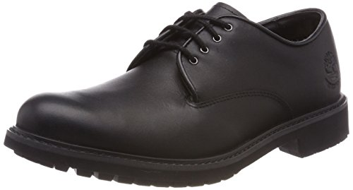 Timberland Herren Stormbuck Plain Toe Waterproof Oxford Schuhe, Schwarz (Black Smooth), 44.5 EU