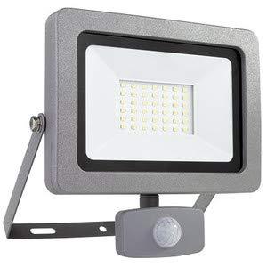 LED Strahler Flare Außenstrahler mit Bewegungsmelder - Erfassungswinkel 120 °, Reichweite 10 m, 30 Watt LED Leuchtmittel - Lebensdauer 25.000 Stunden - Energieeffizienzklasse A+ - Silber
