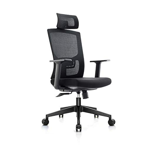 Chain Ergonomic Office Chair,High Back Adjustable Home Desk Chair with Lumbar Support and Rollerblade Wheels,High Back with Breathable Mesh,Thick Seat Cushion,Adjustable Head & Lumbar Support