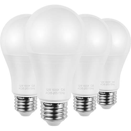 100 watt medium base bulbs - 2