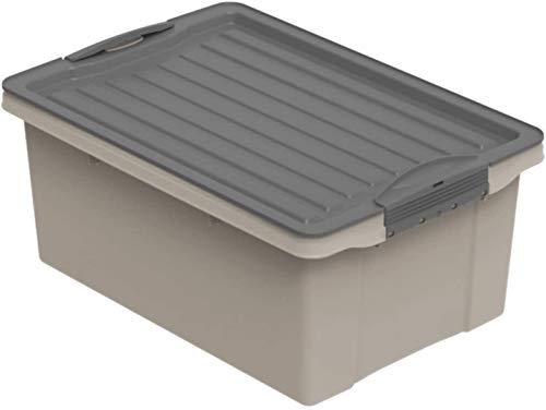 Rotho Compact, Caja de almacenamiento 13 l con tapa, Plástico PP reciclado sin BPA, Marrón (Capuchino)