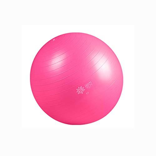 HSJ WDX- Pelota de Yoga Grueso a Prueba de explosiones Pelota de Gimnasia for Principiantes Medias parteras Equilibrio Pelota de Yoga Peso Suelto (Color : Pink, Size : 65cm)