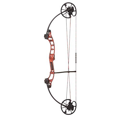 Cajun Sucker Punch Bowfishing Bow Only Features Adjustable Draw Length, 50 lb. Peak Draw Weight