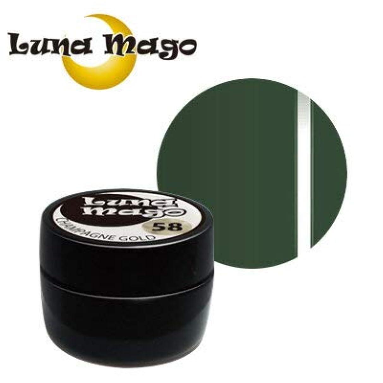 エンターテインメントささいな選出するLuna Mago カラージェル 5g 054 リーフ