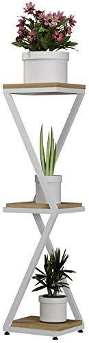 Stand Plant Stand Pot Stand Stand Flower Stand Basamento in acciaio inox Stand con 2/3 Tiers Indoor Plant Stand Plant Stand Esterno Multifunzione Flower Storage rack, 3 taglie interne all'aperto FDWFN