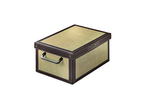 Kanguru Caja de Almacenamiento en cartòn Lavatelli, Modelo TAPIRUS, Pequeña 25x35x17,5cm