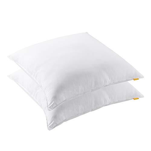 Smile Back Almohada de fibra de 80 × 80 cm, peso de relleno aprox. 1870 g por pieza, almohada de alta calidad [almohada 80 × 80 2 piezas]