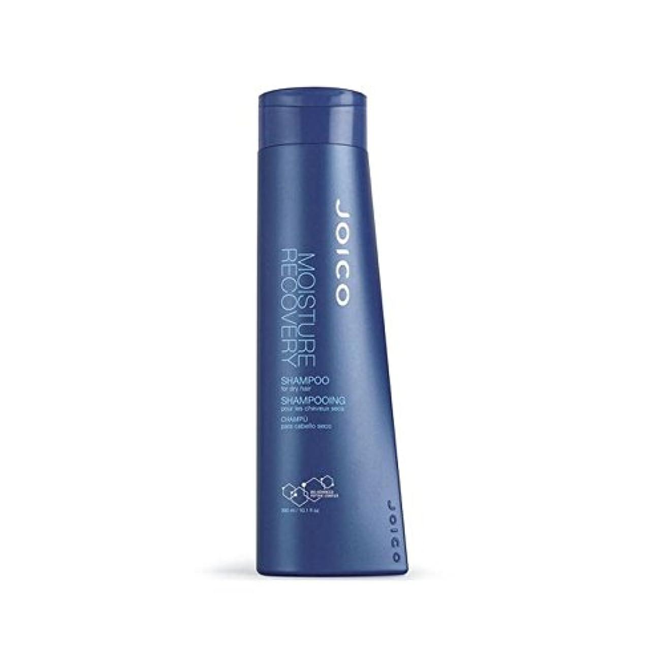 しがみつく火山気楽なジョイコ水分回復シャンプー300ミリリットル x2 - Joico Moisture Recovery Shampoo 300ml (Pack of 2) [並行輸入品]