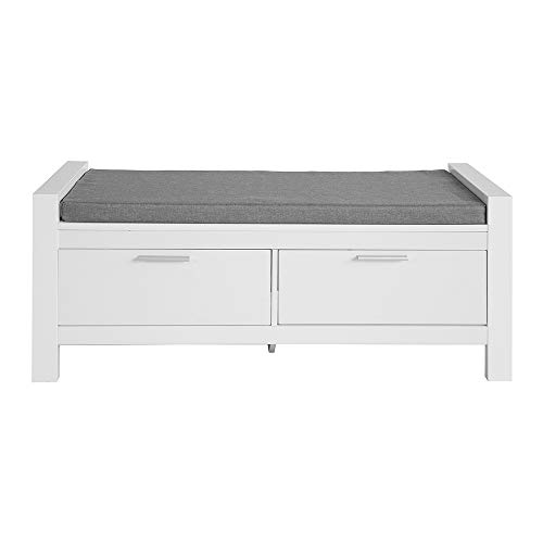 Haotian FSR74WHallway Storage Bench with Two Drawers and Padded Seat Cushion