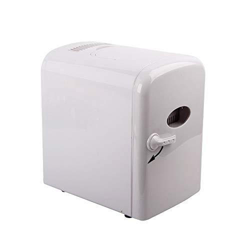 Mini Fridge,4L Auto Car Warmer and Cooler Bag Mini Refrigerator Cosmetics Car Dual Auto Car Home Office 12V,White