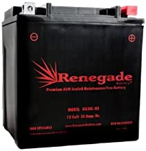 Utility Vehicle Battery; RG30L-BS; Polaris (2018, 2019) RZR RS1 battery; 500 CCA's BTX30L, B30L-B, CB30L-B