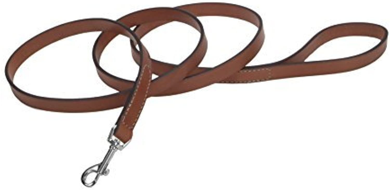 Coastal Pet Products Circle T Oak Tanned Leather Dog Leash, 5 8 x 4', Tan by Coastal Pet