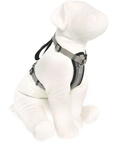 by Barker Brands Inc. Kong Comfort Padded Chest Plate Dog Harness (Large, Grey)