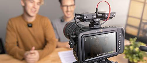 RODE Microphones ロードマイクロフォンズ SC11 3.5mmTRS スプリッターケーブル SC11
