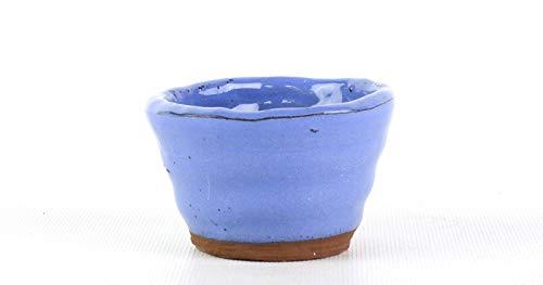Bonsai Pavia | Macetas para Bonsais Yokkaichi A01-01-4 Maceta Japonesa | Color Azul Intenso | Tamaño 8x5 cm