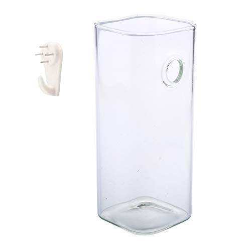 Klar Glasvase Hängevase Glasvase Blumenvase für Pflanzen/Blumen, Rund/Quadrat - Quadrat 15 cm