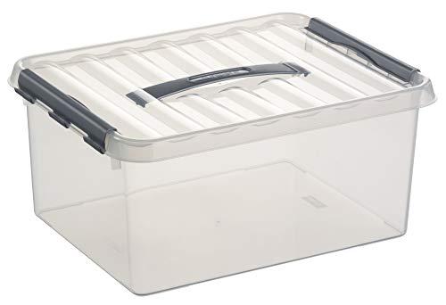 Sunware 78300609 Boite plastique 15L avec poignée, Transparent