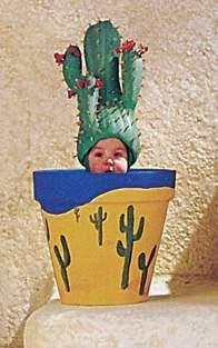 Educa Puzzle 1000 Mini Anne Geddes Cactus 11770