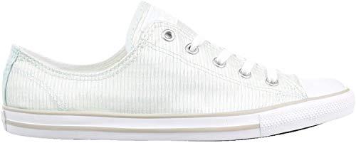 Converse Chuck Taylor All Star Dainty OX Women's Shoe Fiber Glass/Mouse/White 555867f (8 B(M) US)