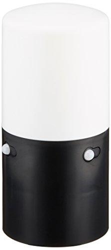 乾電池式LEDガーデンセンサーライト スリム 白色相当 LSL-MS2