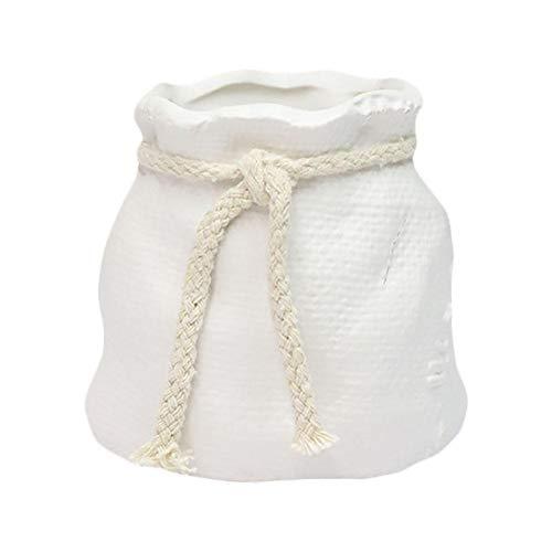 Monbedos 1pcs wit mini keramiek bloempot decoratieve bloempot in creatieve zakvorm bloempot voor binnen gebruikt voor decoratie thuis en op kantoor