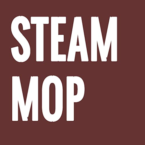 How To Clean a Steam Mop Step by Step Guide