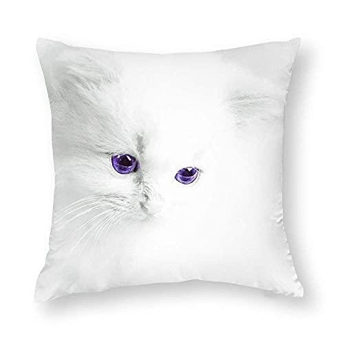 XINMIN Kissenbezüge White Cat B Dekorative quadratische Kissenbezüge für Home Sofa Couch Schlafzimmer