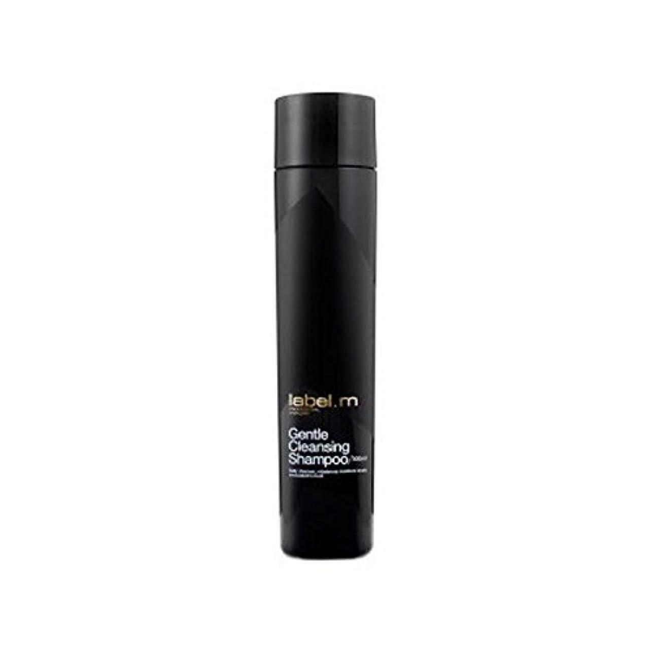 畝間高架厳しい.優しいクレンジングシャンプー(300ミリリットル) x2 - Label.M Gentle Cleansing Shampoo (300ml) (Pack of 2) [並行輸入品]