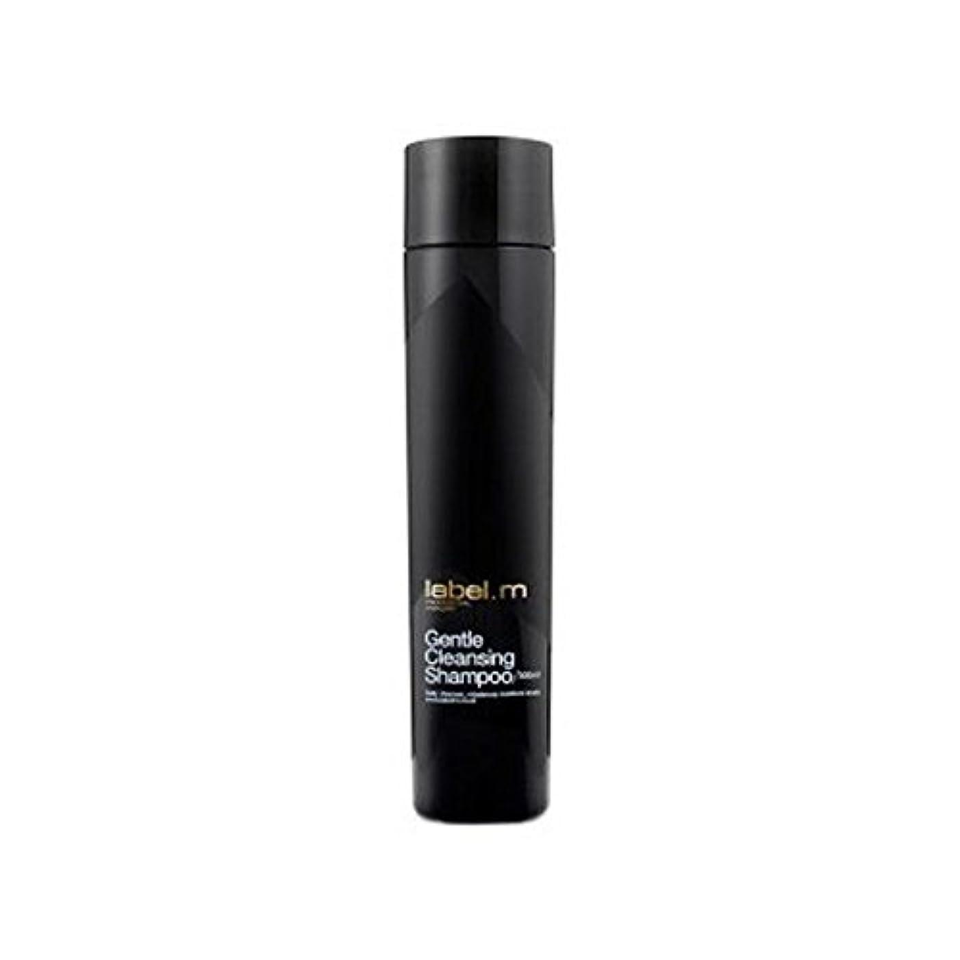 直接夫閃光Label.M Gentle Cleansing Shampoo (300ml) - .優しいクレンジングシャンプー(300ミリリットル) [並行輸入品]