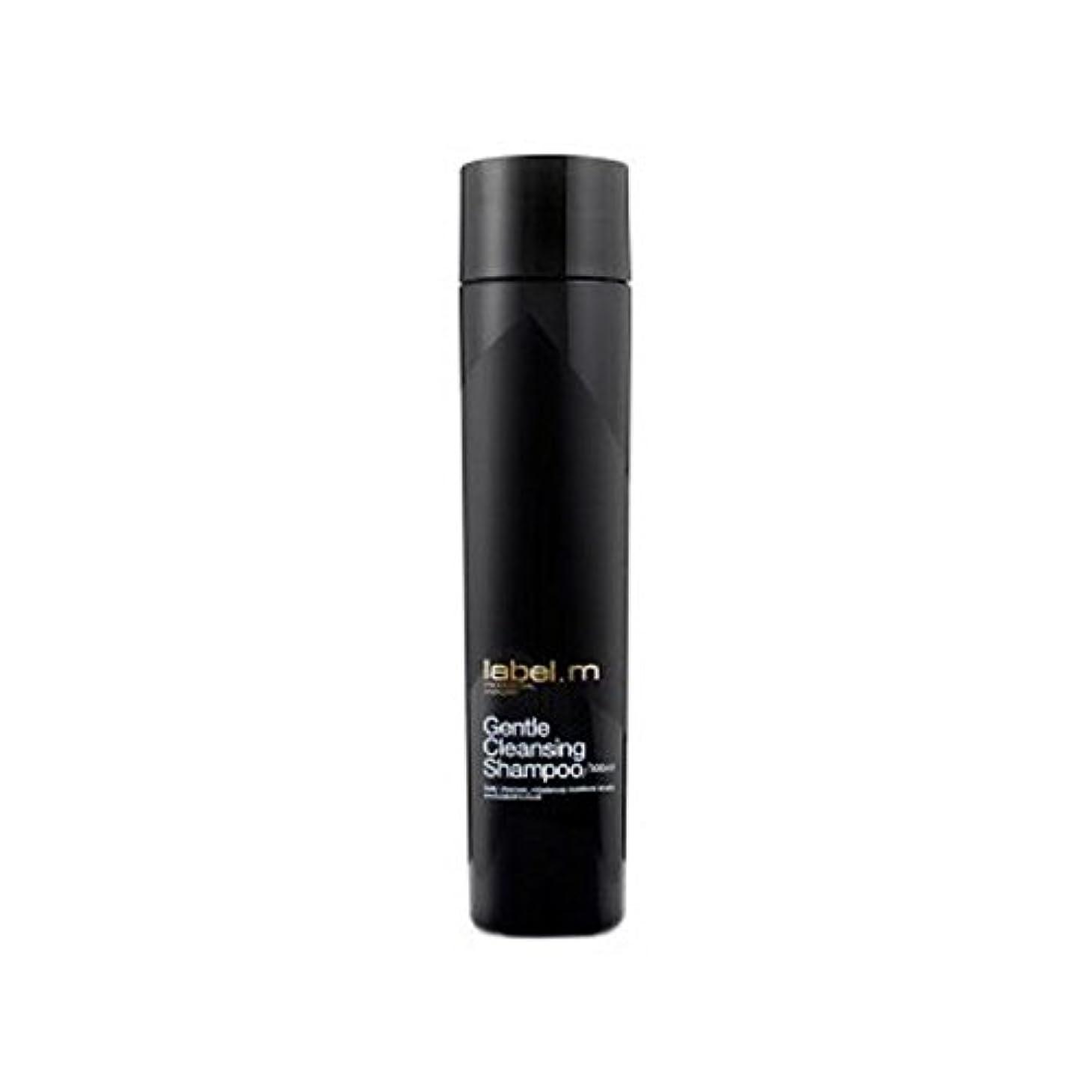 欺ピストン未知の.優しいクレンジングシャンプー(300ミリリットル) x2 - Label.M Gentle Cleansing Shampoo (300ml) (Pack of 2) [並行輸入品]