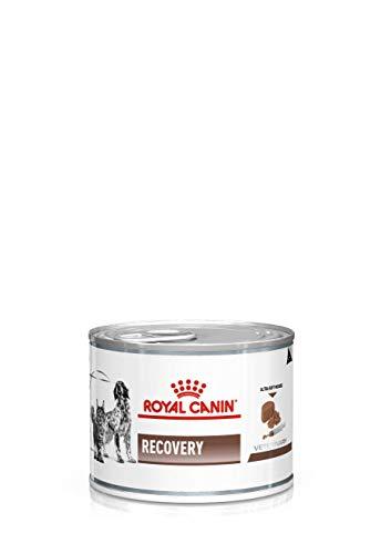 Royal Canin Veterinary Diet Recovery Futter für Hunde und Katzen
