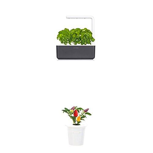Click & Grow Smart Garden 3 jardinière d'intérieur 30 x 10 x 28 cm Gris anthracite (contient 3 capsules de basilic) + 2 recharges rose (x3)