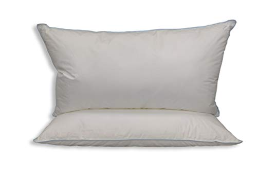 Set of 2 Pillows Similar to Holiday Inn Soft Blue Cord Soft Bed Pillow - King Size