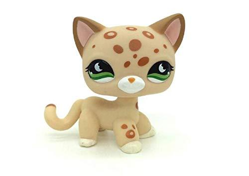 WOOMAX Littlest Pet Shop LPS Spielzeug Katzen-Leopard-Gepard Tan mit orange Stellen-Gr¨¹n mustert bestes Geburtstagsgeschenk