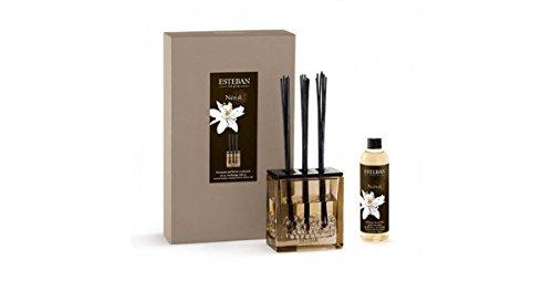 Neroli - Estéban diffuser 250 ml boeket parfumé triptyque, kamergeur boukett