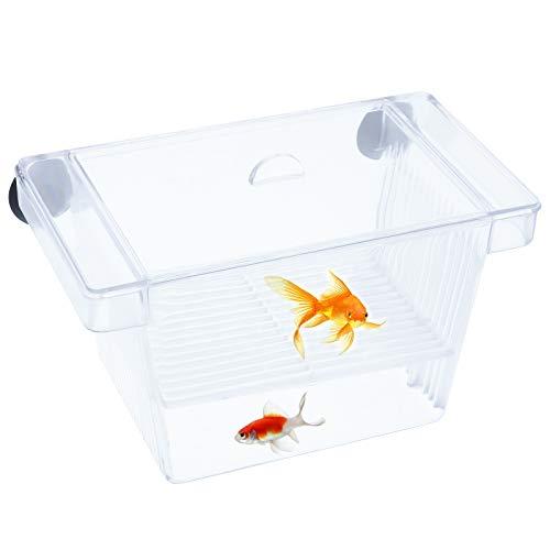 Phoetya Mini Aquarium Breeding Box, Transparente Fischzucht Box mit 2 Saugnäpfe für Schutz Babyfische Garnelen im Aquarien Kleine