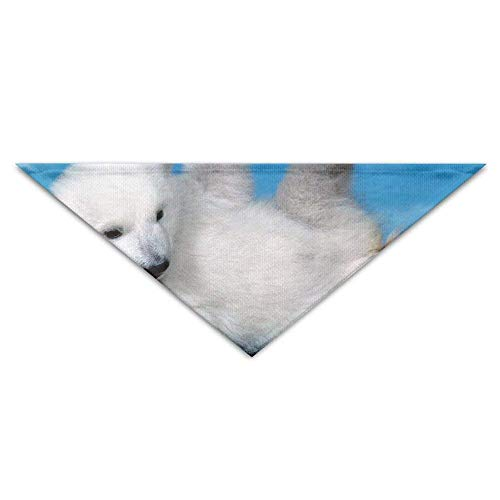 Gxdchfj Pet Triangle Banna Cute Polar Bear Baby Washable Dog Puppy Scarf Bib Babys Neckerchief Accessories