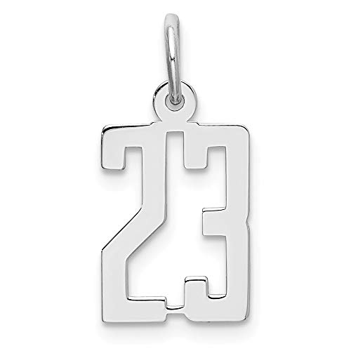 925 Sterling Silver Small Elongated Pol Number 23 Pendant Charm Necklace Sport Fine Jewelry For Women Gifts For Her