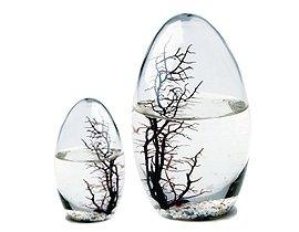 Ecosphere - Das Original nach NASA (Großes Ei)